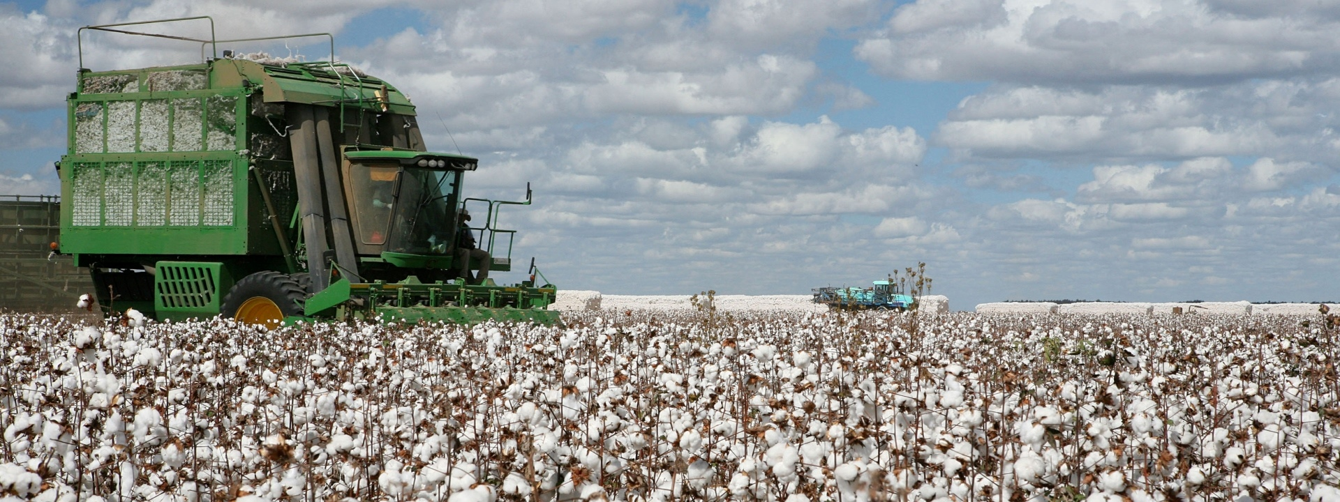Cotton Tours to Farm and Gin